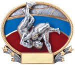 3D Oval -Wrestling Male Wrestling Trophy Awards